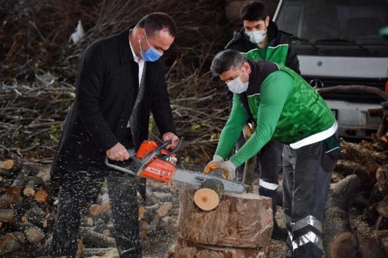Beyoğlu'nda budanan ağaç dalları ihtiyaç sahiplerine yakacak oluyor