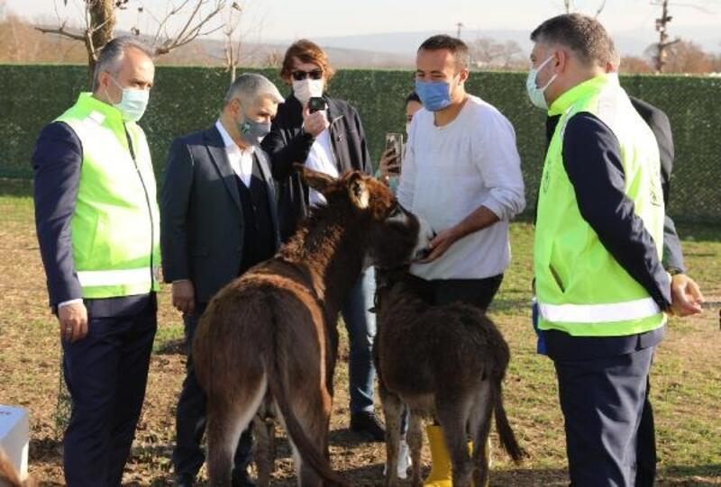 Bursa Büyükşehir Belediye Başkanı Aktaş, Emekli Hayvanlar Çiftliği'ni ziyaret etti