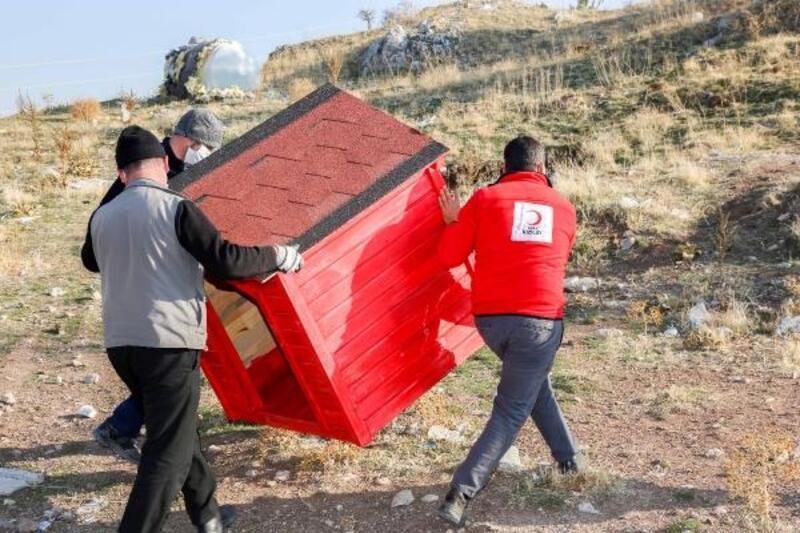 Gönüllülerce Meram'a, yeni kedi, köpek ve kuş evleri kazandırılıyor