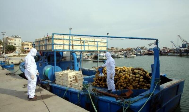 Balıkçı tekneleri dezenfekte edildi