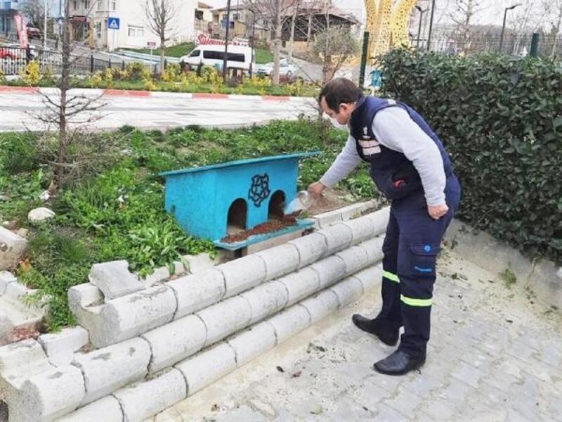 Süleymanpaşa'da sokak hayvanlarına yeni barınma alanları kuruluyor