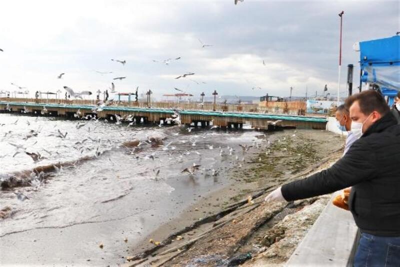 Süleymanpaşa'da sokaktaki canlara 'gönül eli' uzandı