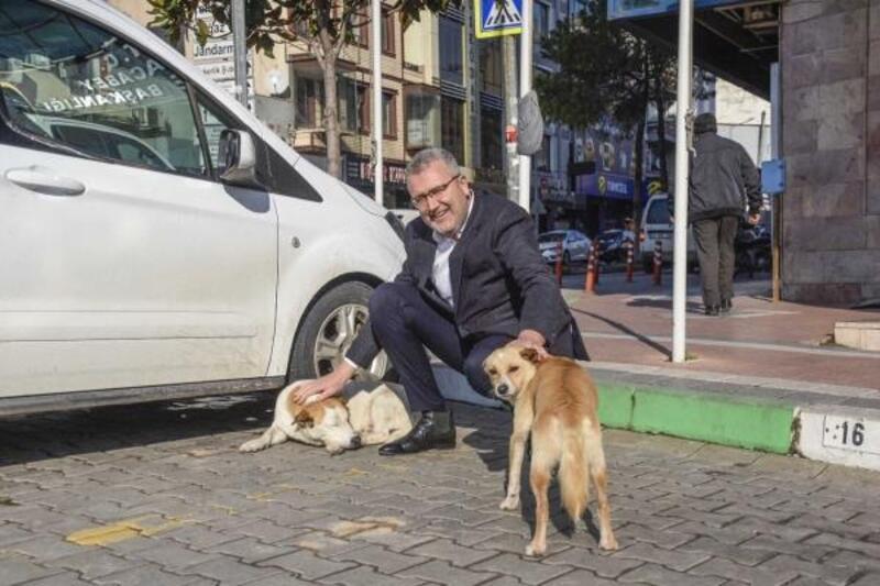 Karacabey Belediyesi sokak hayvanlarını unutmuyor
