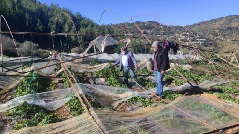 Gazipaşa'da seralar zarar gördü