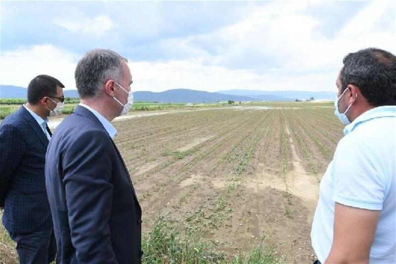 İnegöl Belediye Başkanı Taban: İnegöl'de özgün bir tarım modeli hayata geçirildi