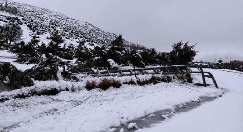 Kar yağışı direkleri devirdi, 5 mahalle elektriksiz kaldı