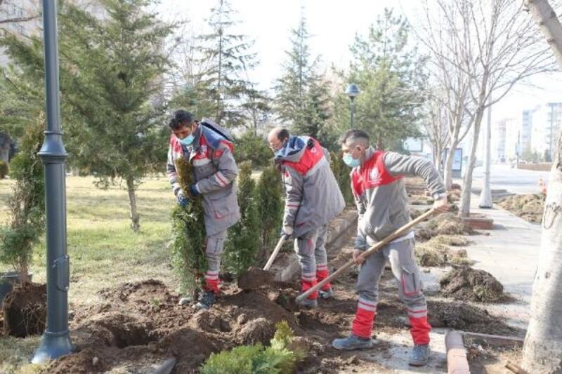 Melikgazi'de ağaçlandırma çalışması sürüyor