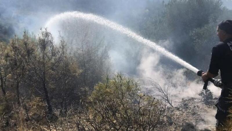 Manavgat'ta arazi yangını