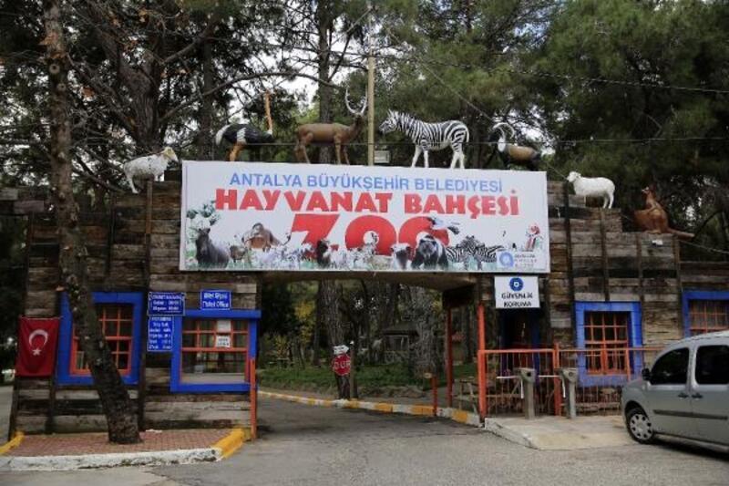 Antalya Hayvanat Bahçesi kapılarını ziyarete açıyor