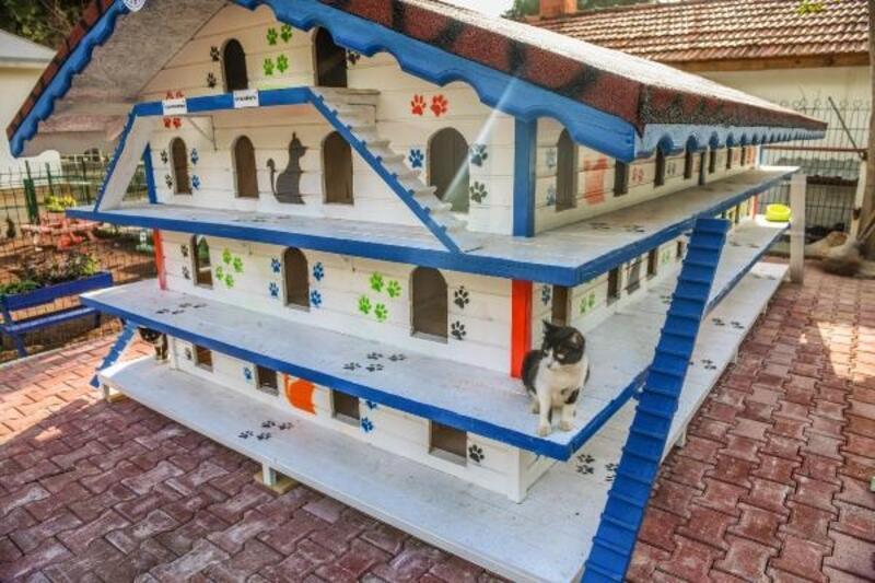 DokumaPark'a 'Kedi Apartmanı'