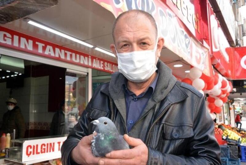 Yaralı güvercin polis ekiplerine teslim edildi