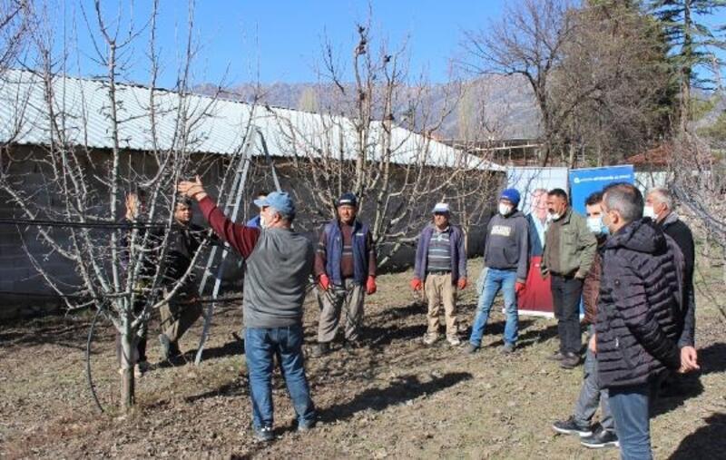 Elmalı'da çiftçilere budama eğitimi
