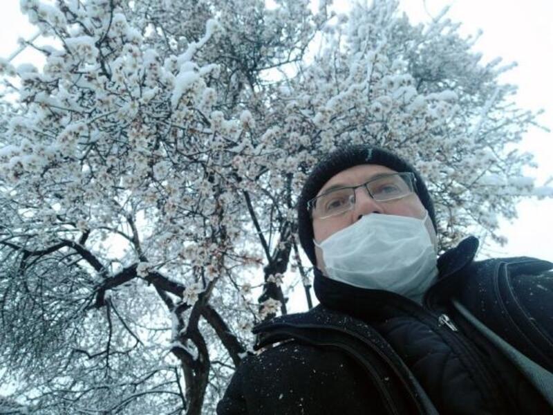 Çiçek açan ağaçlar karla kaplandı