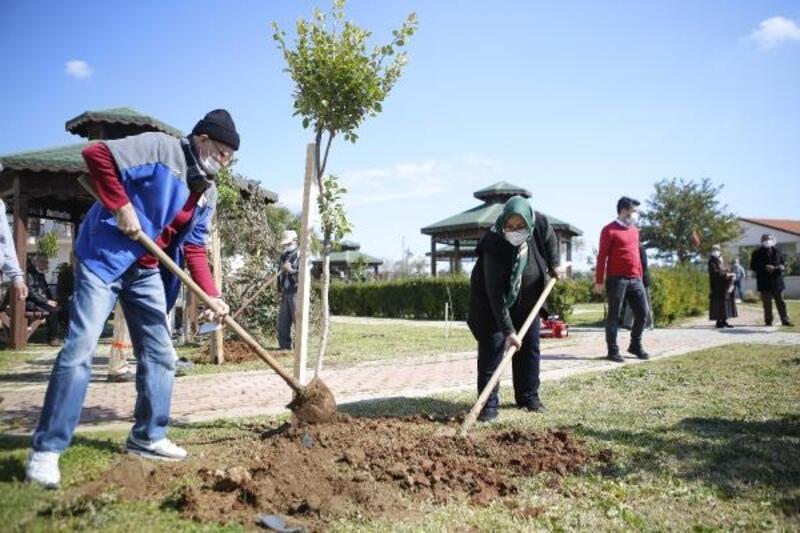 Yaşlılar Haftası'nda huzurevi sakinleri ağaç dikti