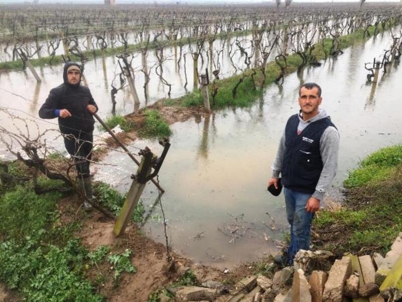 Alaşehir'de çiftçilere zirai don uyarısı