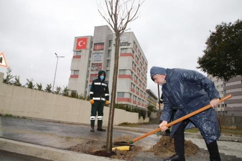 Sultanbeyli Belediyesi Orman Haftası için fidan dikimi gerçekleştirdi
