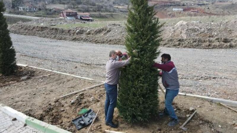 Tokat'ta Erenler Şehitliği'nde ağaçlandırma ve bakım çalışması
