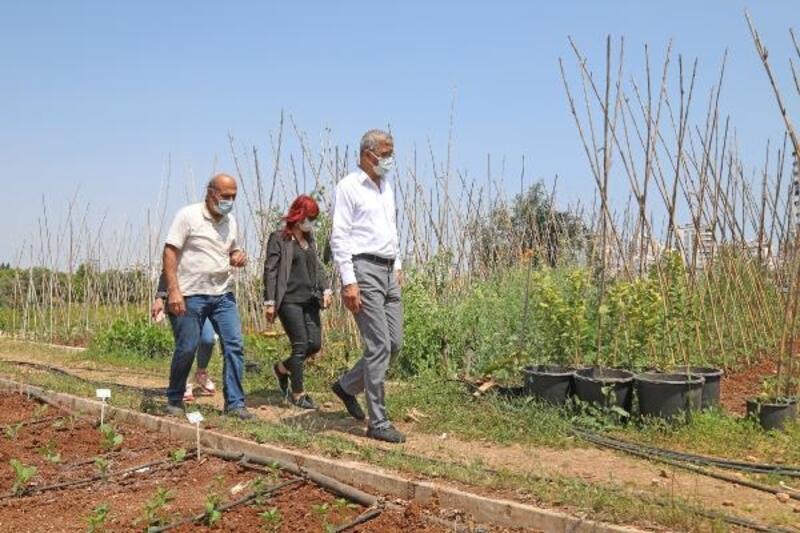 Başkan Tarhan'dan gönüllü serasına ziyaret