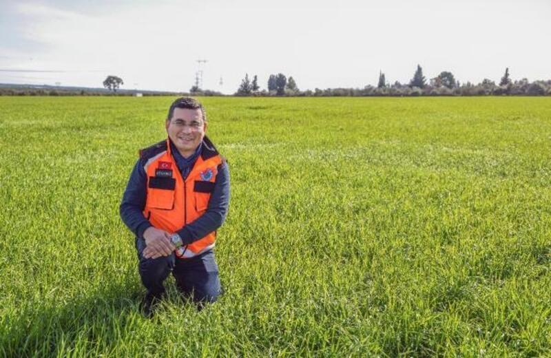 Kepez'in buğday tarlalarında başak bereketi