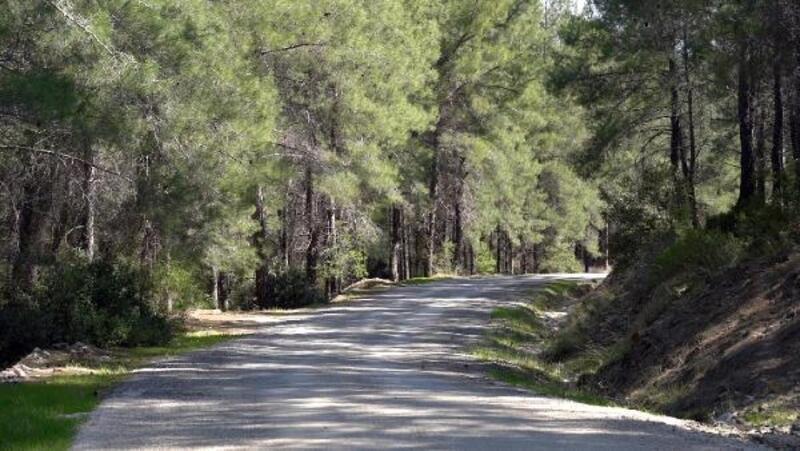 Büyükşehir'den, 38 kilometrelik yürüyüş ve bisiklet yolu