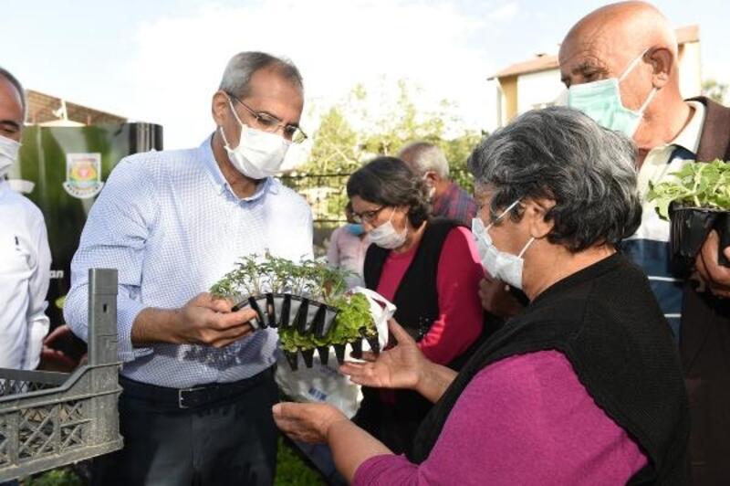 Ata tohumu ile yetiştirilen 300 bin fide üreticiye dağıtıldı