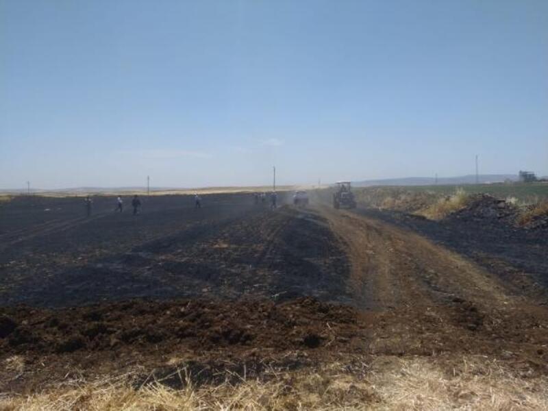 Kilis'te, arazi yangını