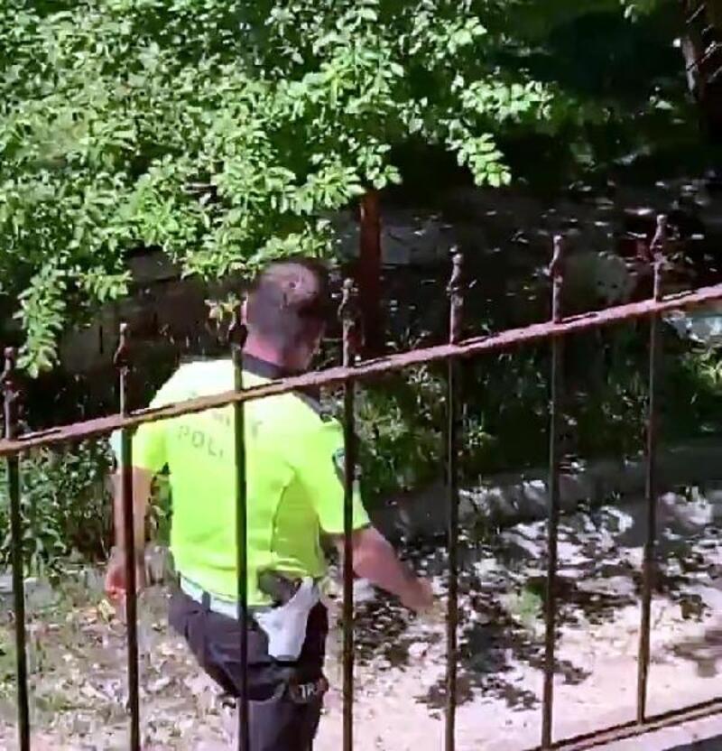 Polis memuru, kafası tellere sıkışan köpeği kurtardı
