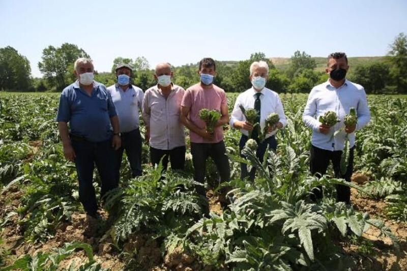Nilüfer Belediye Başkanı Erdem: Hasanağa enginarı marka oldu