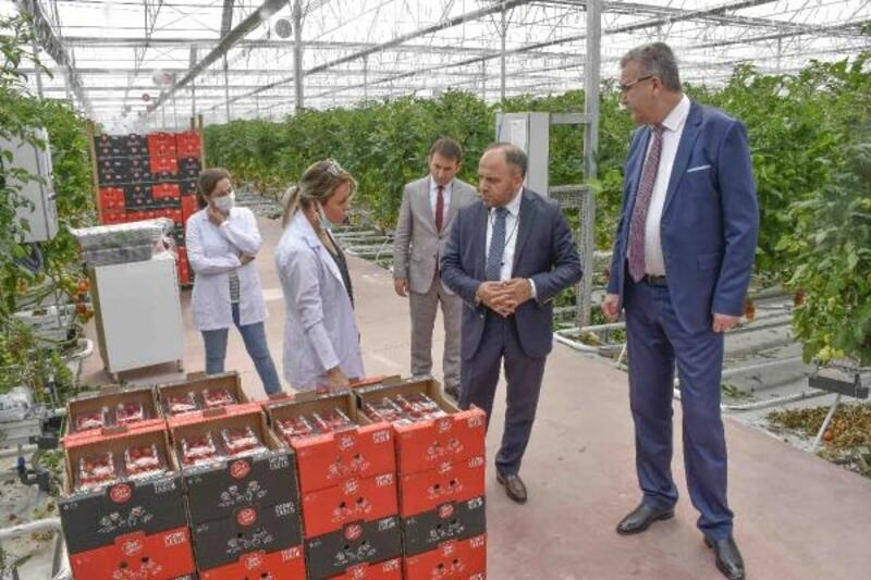 Karacabey Belediye Başkanı Özkan, TÜRKŞEKER'in Ankara'daki modern sera tesislerini inceledi