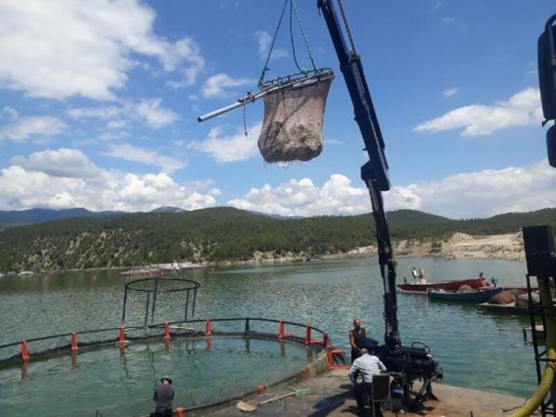 Başkan Çelik, balık üretim tesisini ziyaret etti