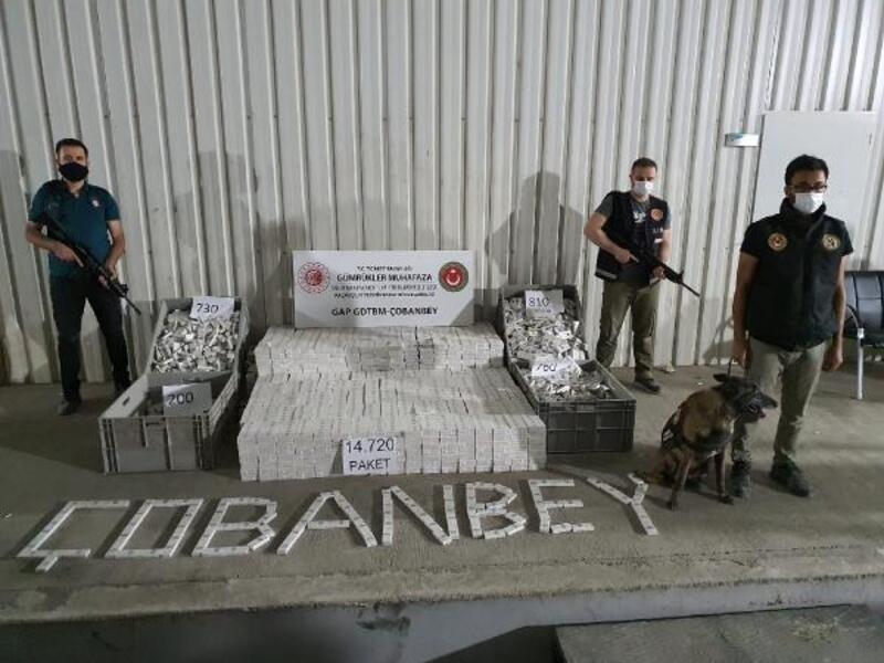 Kilis'te, 14 bin 720 paket kaçak sigara yakalandı