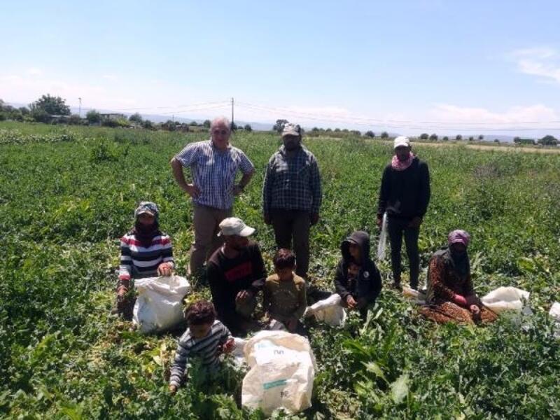 Yenişehir Kaymakamı Seyitoğlu, mevsimlik işçileri ziyaret etti