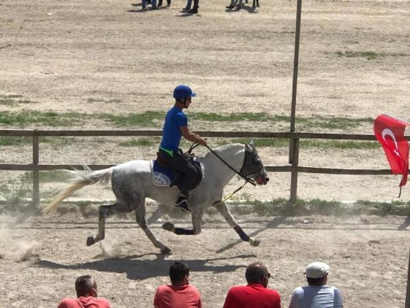Rahvan yarışında birinci gelen 'Bey-Şehirli' at Türkiye şampiyonasına katılacak