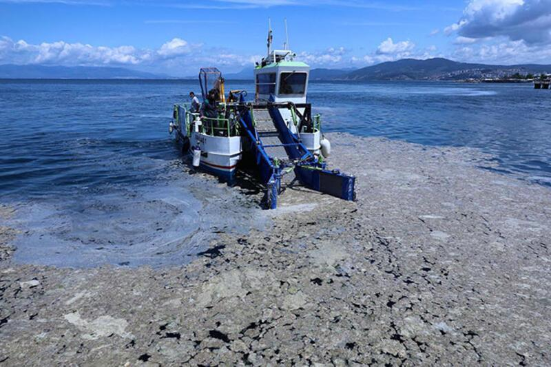 Marmara Denizi'nin büyük çığlığı