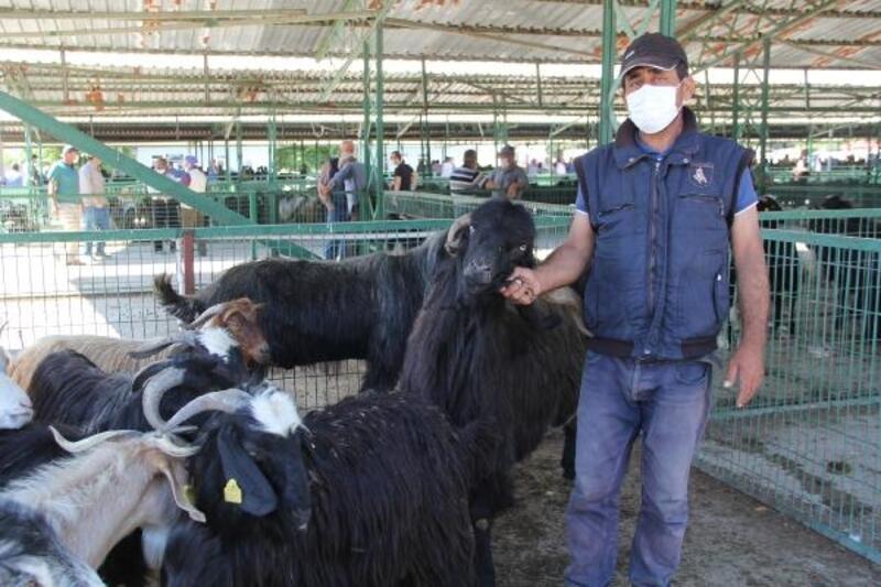 Hayvan pazarlarında denetim