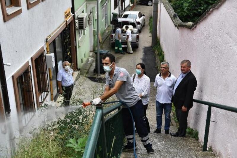 Çekirge Mahallesi, haşerelere karşı ilaçlandı