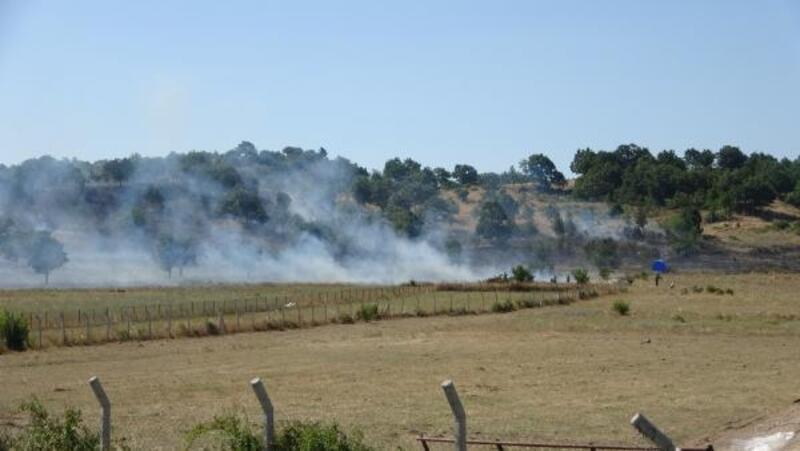 Çanakkale'deki anız yangını
