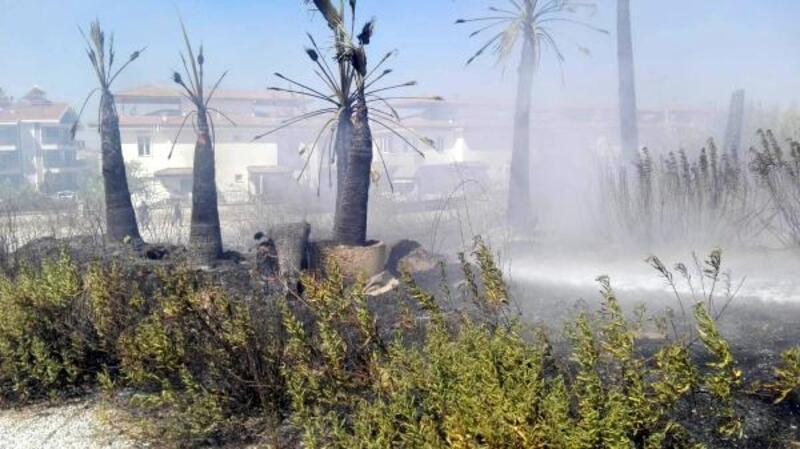 Manavgat'ta fidanlık yangını