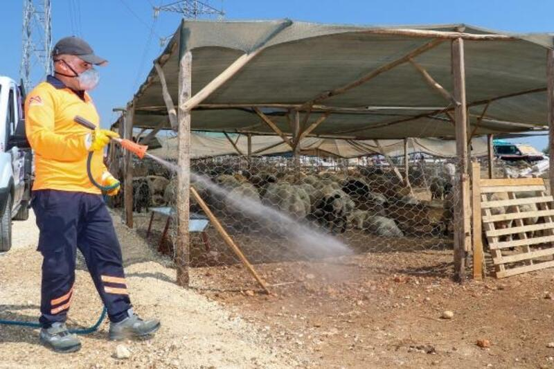 Mersin'de, bayram öncesi karasinek ilaçlaması