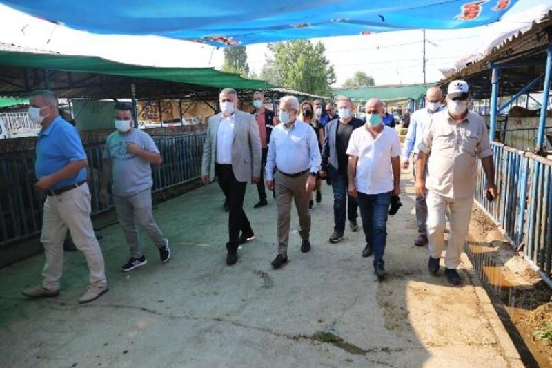 Başkan Erdem'den hayvan pazarına ziyaret