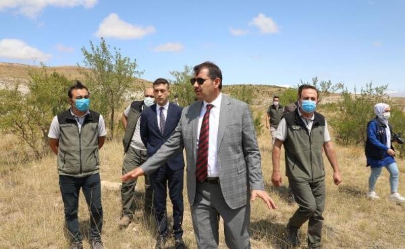 Vali Ayhan: Sivas'a iklime uygun ağaçlar dikiliyor