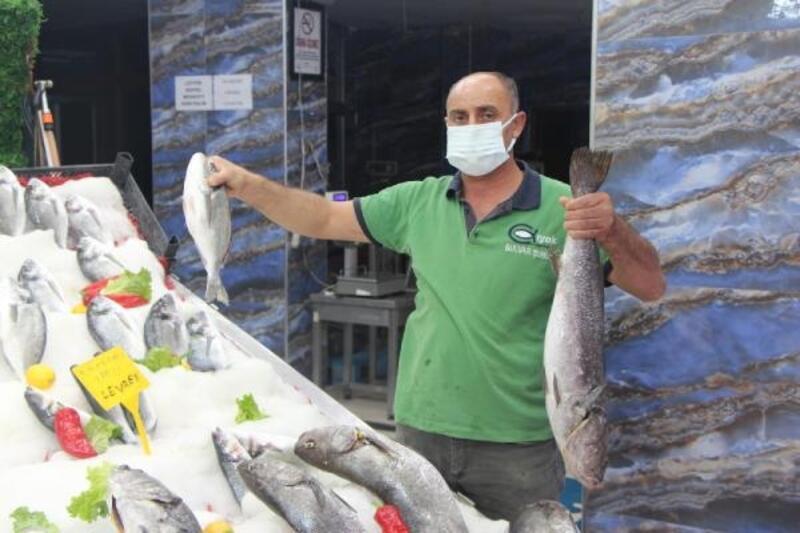Sezon öncesi balıkçıların gözü çingene palamudunda