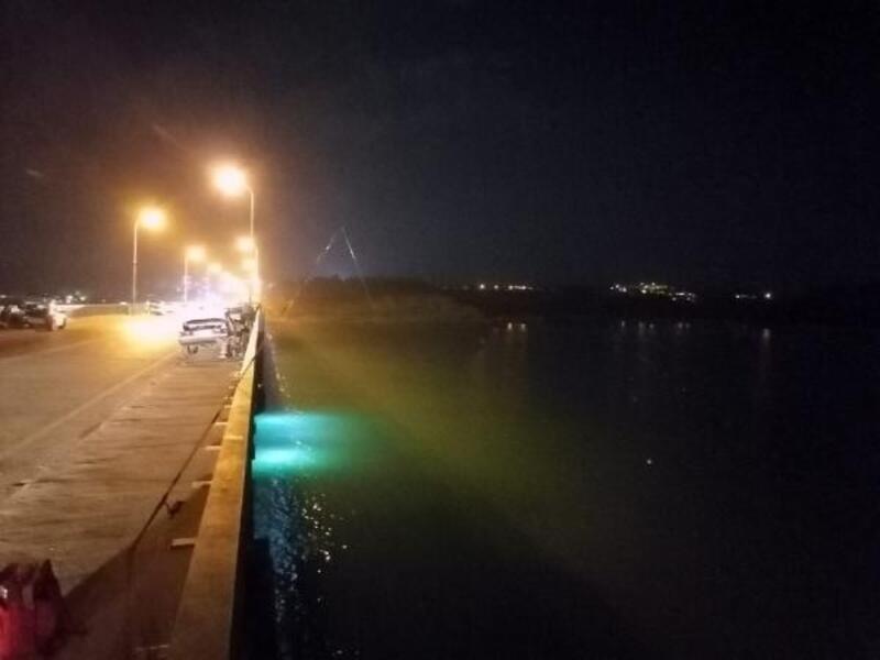 Çatalan Doğu Köprüsü, usulsüz avlanan amatör balıkçıların meskeni oldu