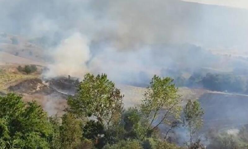 Bursa'da ayçiçek tarlasında yangın