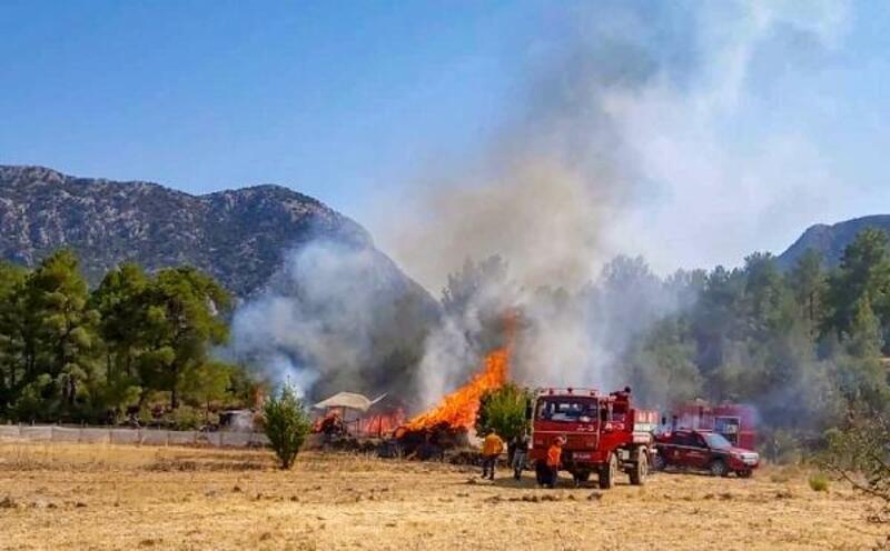 Yangın ormana ulaşmadan söndürüldü
