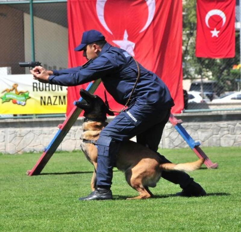 Nevşehir'de 30 Ağustos Zafer Bayramı kutlandı