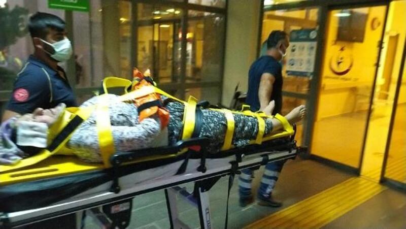 İncir ağacından düşen kadın ağır yaralandı