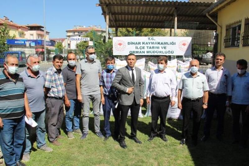 Dinar'da hibe fiğ tohumu dağıtıldı