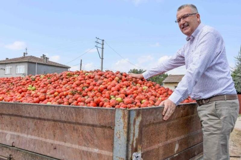 Karacabey'in kırmızı elmasına talep çok