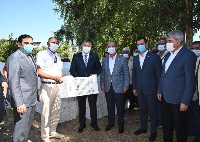 Osmaniye'de 133 çiftçiye 4 bin adet plastik zeytin kasası dağıtıldı